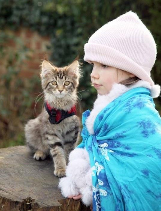 thula-cat-autism-1