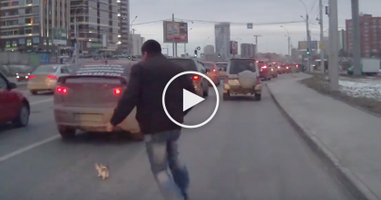 Man Notices Tiny Kitten About To Get His Head Smashed, But Then… Just WATCH